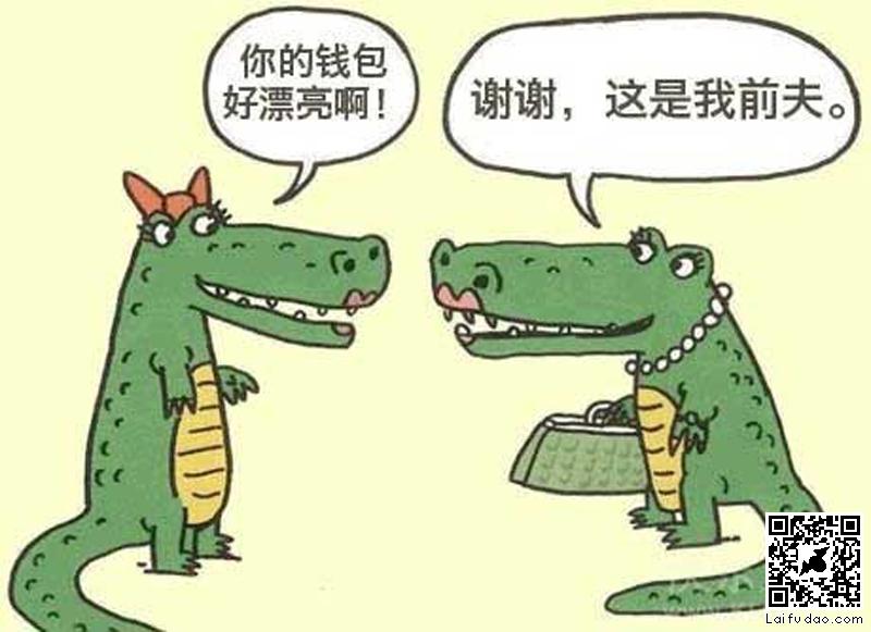 鳄鱼漂亮的钱包 - 搞笑图片盒子