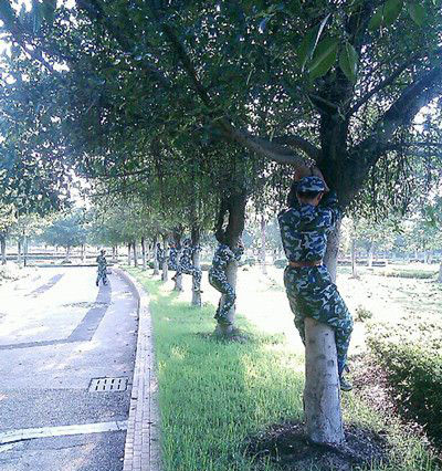 今天的军训科目是学习抱树! - 搞笑图片盒子