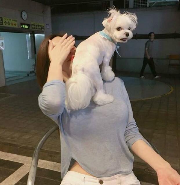 等你来挑战_动物图片_来福岛爆笑娱乐网