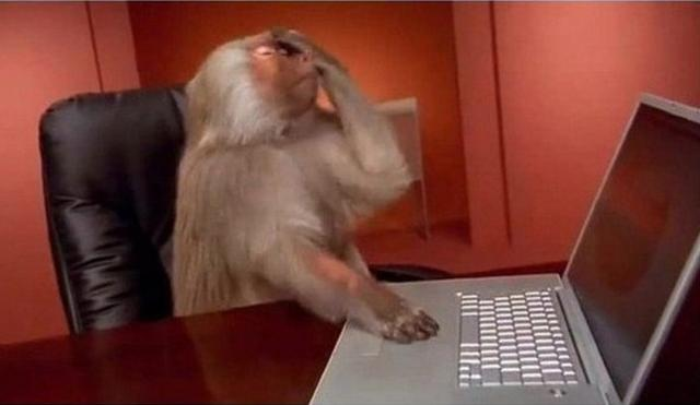 头痛啊_动物图片