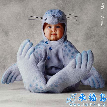 超级可爱的动物baby 28
